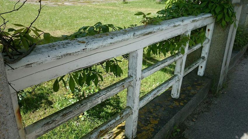 Geländer in Sassnitz