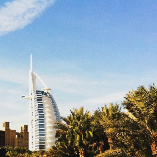 Architecture Built Structure Palm Tree Building Exterior Sky Tree Low Angle View Dubai City No People Day Outdoors Growth Modern Cloud - Sky Skyscraper Nature