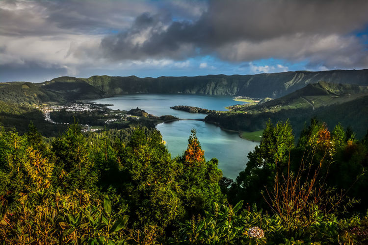 Furnas(Azoren) Azores Açores Portogallo Furnas Park Lake Lake View Green Ponta Delgada Açores - São Miguel Portugal Square Citysquare Cat Black Cat Cow Eye Water Tree Mountain Sea Panoramic Sky Landscape Cloud - Sky
