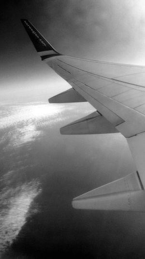 Aeroplane Sky View Blackandwhite