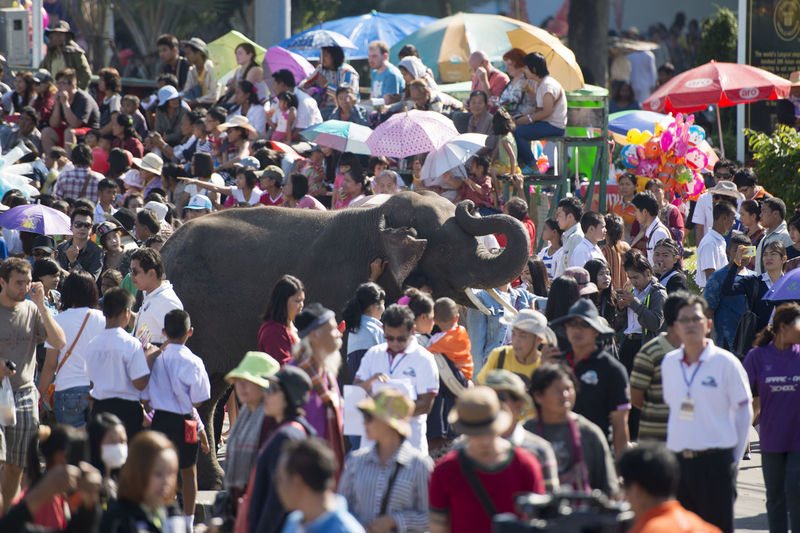 Elephant Amidst People On Street During Festival