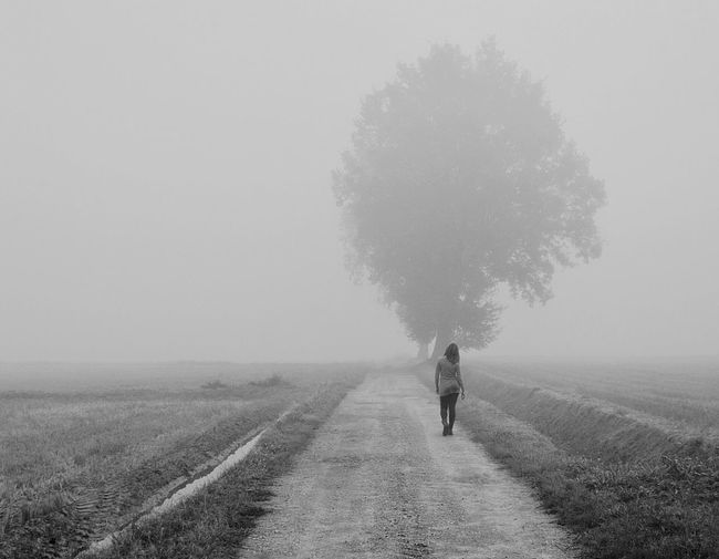 Rear View Of Woman Walking On Dirt Road In Foggy Weather