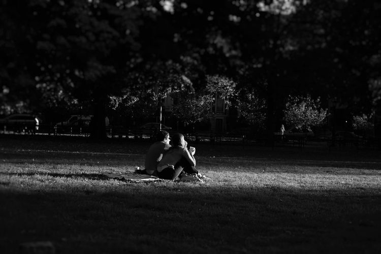 Couple Siting In Parck,nyc Park.brooklyn ,bed Stuy Nyc Park.brooklyn