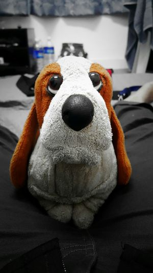 Homesweethome Woffwoff Softoy Hushpuppy Bassetthound Goodnight