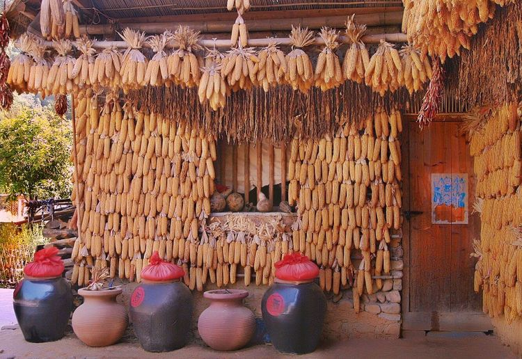 Village in China Hanging Large Group Of Objects Abundance Variation No People Day Freshness Indoors  Popular Photos Travel Destinations Scenics Popular Popular Photo Healthy Eating Hanging Food