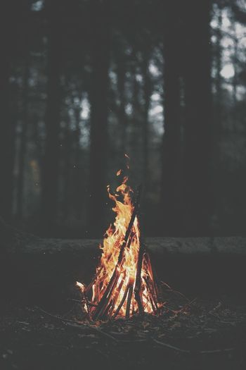 Paint The Town Yellow Campfire Flames Outdoors Family❤ Happy Love