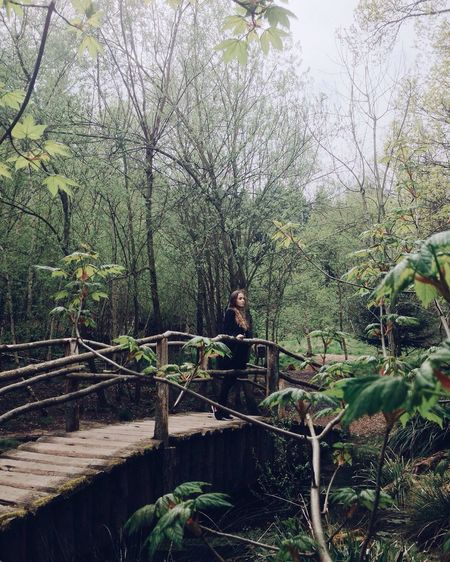 Spring Springtime Green Self Portrait Portrait Portrait Of A Woman Girl Wanderlust Into The Woods Bridge Romantic Green Color Leafs Hello World Forest Standing Relaxing Spring Time