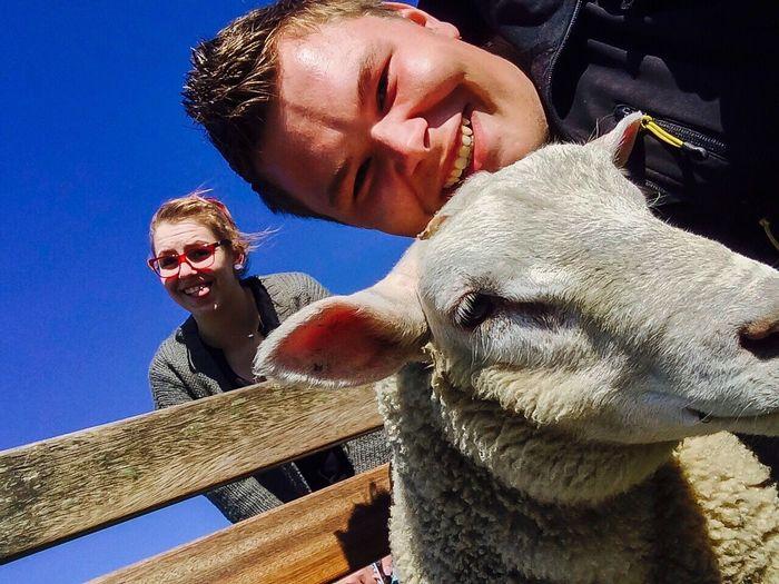 Sheep Beach Deich  Kurzurlaub Selfie ✌ Girlfriend Happy Nordsee Federwadersiel