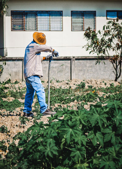 Man working on plants
