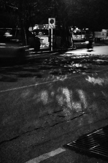 Waiting For A Taxi Road TreesLight And Shadow Chaweng Koh Samui Thailand Travelphotography Eyeemkohsamui Eyeemthailand Eyeemphotography Eyeemcollection Bnw Bnw_thailand Bnw_kohsamui Bnw_captures Bnw_world Bnwcollection Bnwphotography