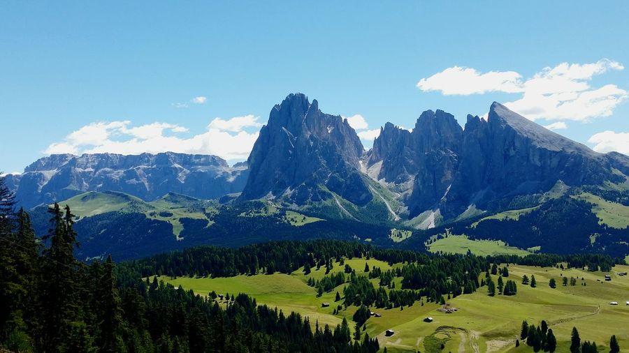 Nature Forest Mountain Blue Sky Mountain Peak No People Dolomites, Italy Wilde Peace And Quiet Val Gardena Sassolungo