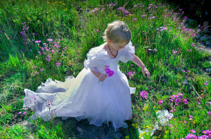 Child Child With Flowers Childhood Children Only Day Flower Full Length Garden Girls Grass Nature One Girl Only One Person Outdoors People White Dress