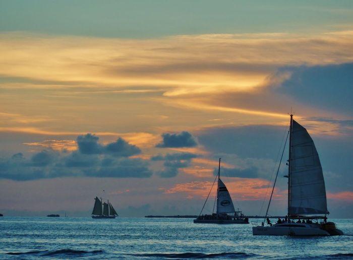 Sail Boat Ocean