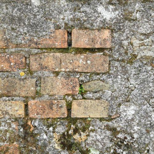 Concretewalls Brickwall Bricks Orange Gray Textures And Surfaces Background ArchiTexture Architectural Detail Moss & Lichen
