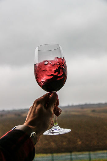 Adult Adults Only Alcohol Close-up Day Drink Drinking Glass Focus On Foreground Food And Drink Freshness Holding Human Body Part Human Hand Men One Person Outdoors People Real People Red Wine Refreshment Sky Wine Wineglass Winetasting