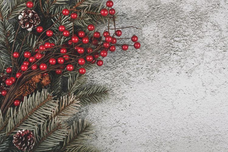 Red berries on christmas tree