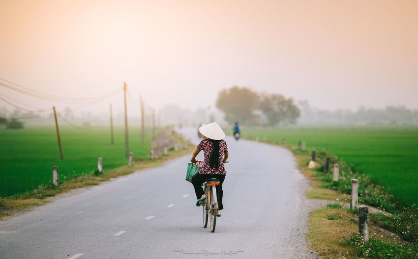 Road Adult Asian Style Conical Hat Beauty In Nature Bicycle Cycling Cycling Helmet Day Headwear Land Vehicle Lifestyles Mode Of Transport Nature One Person Outdoors People Real People Rear View Riding Road Scenics Sky Transportation Tree Women
