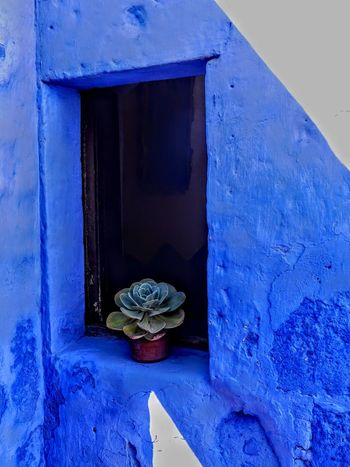 Blue No People Arequipa Arequipa - Peru Monastery EyeEmNewHere Perù 🇵🇪 Peru Travel Destinations Architecture Plant