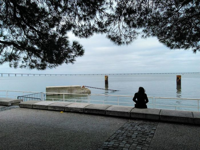 a woman sitting on a bench under trees staring at the open sea Woman Silhouette Staring Open Sea River Trees Solitary Alone Water Sea Tree Full Length Beach Sitting Sky