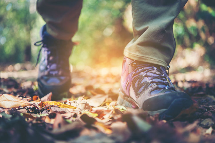 Low section of man walking in forest during autumn