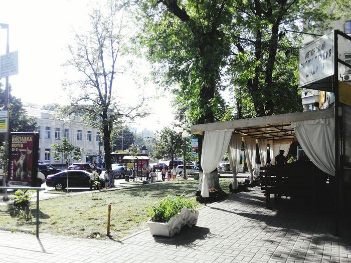 Enjoying Life Kyivgram LoveKyiv Walking Street What I Saw Followme Enjoying Life Green Greencapital Ukraine