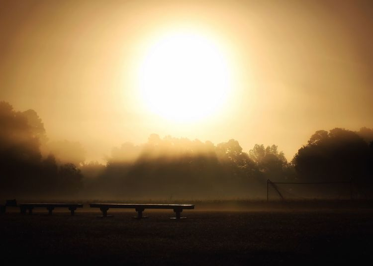 Early morning on the soccer pitch. 🌅⚽️ Morning Fog Ethereal Sun Beauty In Nature Nature Sunrise Scenics Tranquility Tranquil Scene Field Outdoors Tree Idyllic Landscape Sky Autumn Taking Photos Softness Walking Around Freshness Grass Dew