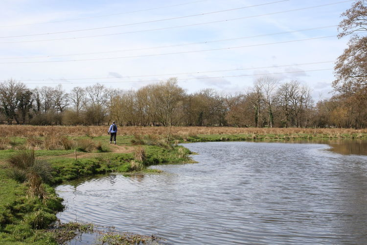 Rear view of person by river on field