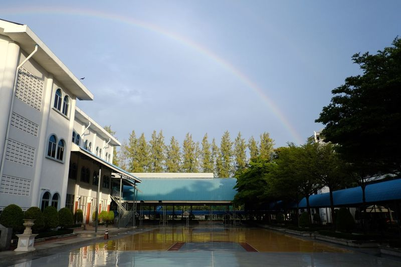 Rainbow Architecture Tree Water Building Exterior Plant Sky Built Structure Nature Cloud - Sky City Day Wet Building No People Multi Colored Outdoors Beauty In Nature Rain Rainy Season