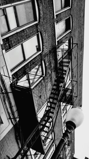 Old Buildings Black And White Street Photography Architecture_bw OpenEdit Old Town Fire Escape Window Reflections Things In A GlassLooking Up Can Be So Rewarding Shadows & Lights Sidewalk Blackandwhitephotography Streetphotography Black And White Collection  Up Close With Street Photography Up Close Street Photograpy Check This Out From Where I Stand Black And White Photography Fire Escapes Fire Escape Fetish