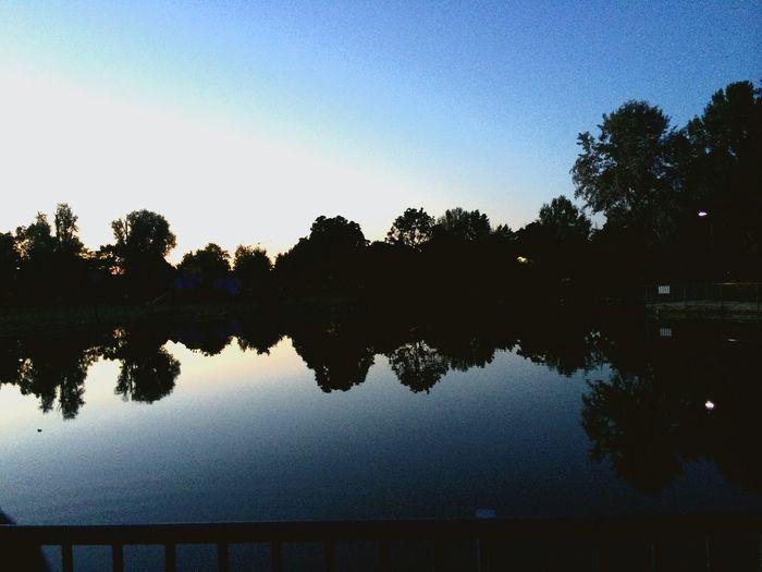 Nature Silence Peace