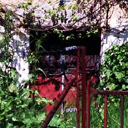 Puerta roja Red Closedoor Thisisspain