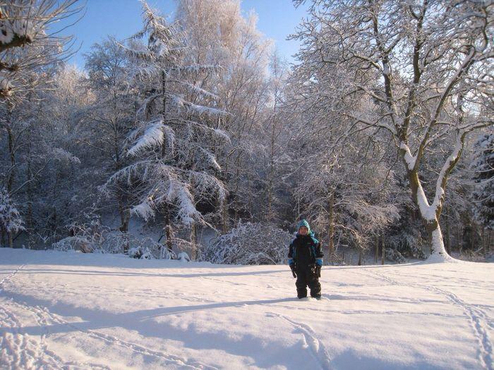 Winter White By CanvasPop Landscape Winter Boy