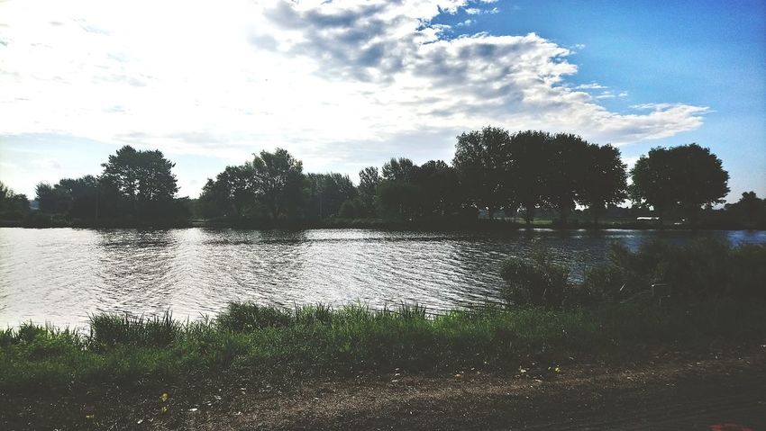 Lake Agriculture
