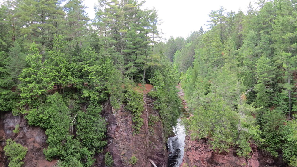 Adventures Beauty In Nature Copper Falls Wisconsin Day Forest Growth Hiking Trail Nature No People Outdoors Peaceful View Plant Rocky Hills Tree Trees Waterfall