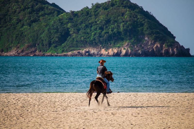 Water Real People Mammal Domestic Animals Domestic Animal Themes Horse Animal Beauty In Nature Riding Ride Day Horseback Riding Pets Vertebrate One Animal Lifestyles Nature Land Outdoors Cawboy Sea Blue Sky Beach