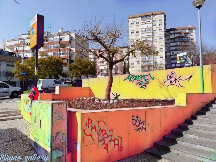 City Tree City