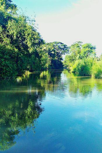 Pristine. Asuszenfone2 EyeEm Rural Philippines Attemptsatphotography River Riverbank Reflection Reflective