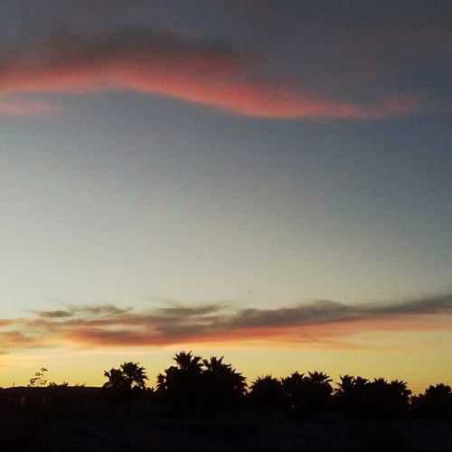 Yep, im happy here. (: Palmtrees Tangerineskies Sunset Home viewfrommycastle