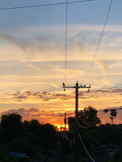 Wired at sunrise Clouds Morningsky Arizona Arizona Sky Sunrise Sky Cloud - Sky Silhouette Plant No People Electricity Pylon Cable Tree Orange Color Electricity  Beauty In Nature