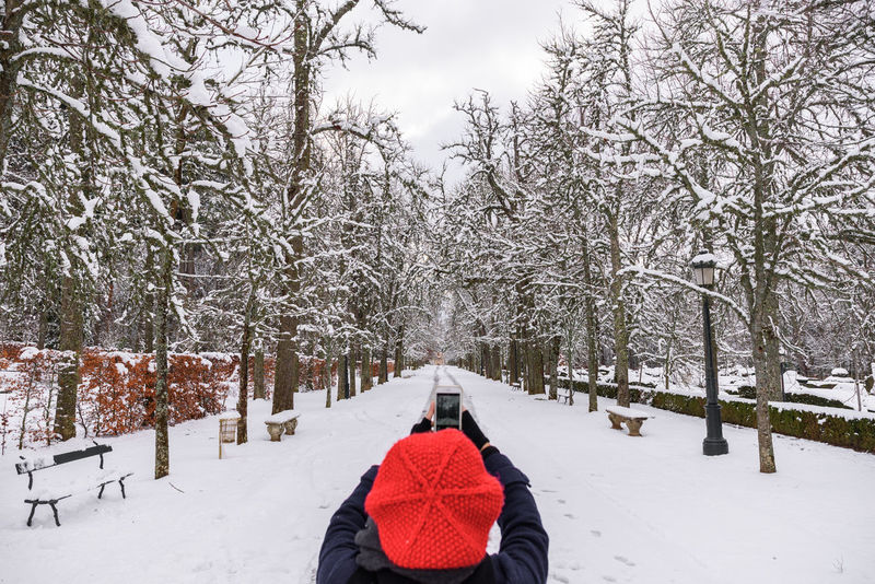 A woman with a red hat takes a picture of a winter picture of a road surrounded by trees, completely snowed. Nature Perspectives on Nature Red Hat Tree Bare Tree Beauty Beauty In Nature Branch Cold Temperature Day Growth Human Body Part Nature One Person Outdoors People Photography Scenics Selfie Sky Snow The Way Forward Tree Trees And Nature Winter Shades Of Winter The Great Outdoors - 2018 EyeEm Awards