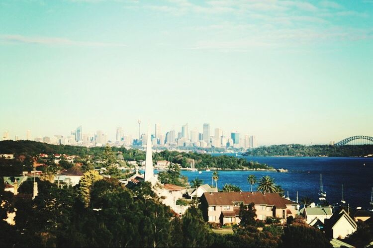 Sydney. Australia NSW Australia City Sydney, Australia Travel Travel Photography View Beautiful View Stunning Breathe Taking  Tree Day Modern Blue Green Cityscape Architecture Homes Famous Place Green Color Home Sweet Home Tour Explore Exploring Scenic