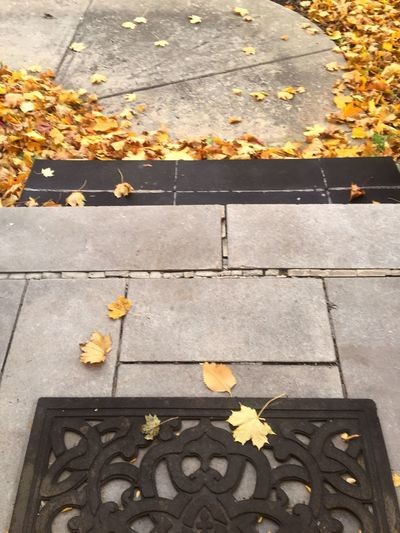Leaf Autumn Outdoors Yellow Leaves No People Entrance Welcome Door Entrance Balcony Ciment Bricklaying