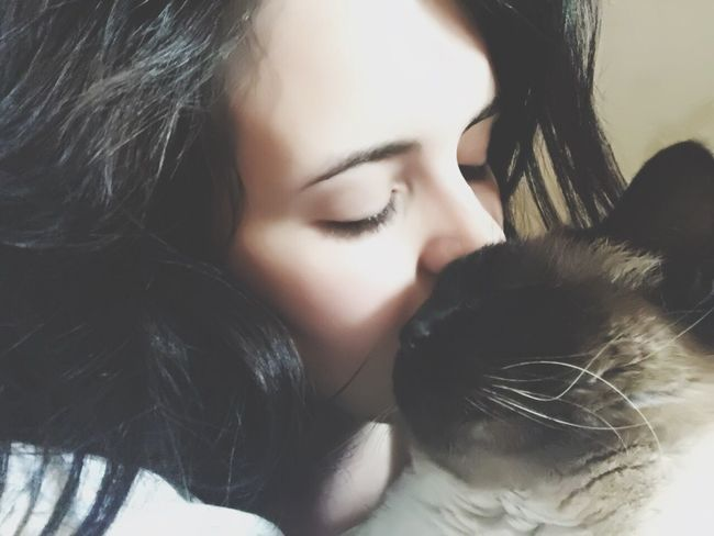 Cat Love is the best love