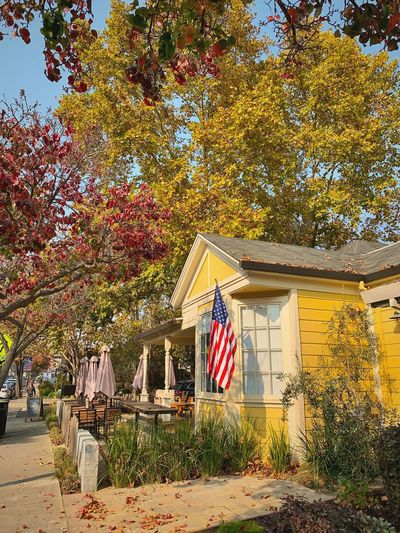 """Americana"" Main Street In the town of Danville, California reflects both beautiful Autumn colors and a touch of Americana. City Streets  Americana American Flag Autumn Suburban Exploration Autumn colors Fall Fall Colors Yellow House  Built Structure Architecture Flag Building Building Exterior Patriotism House"