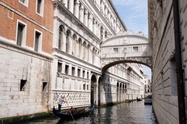 Gondola - Traditional Boat Transportation Gondolier Canal Men Architecture Gondola Travel Destinations Venice Venezia Ponte Dei Sospiri Ponte Dei Sospiri Venezia Turistic Places Light And Shadow Sunny