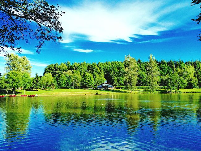 Normandy France Workaway Amazing Lake Lake View Nature Peaceful Enjoying Life