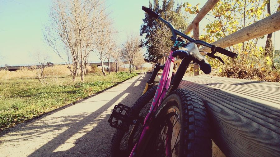 Bike Dirt Nature Relaxing Love Pink Perfect Colors Wheels Beautiful