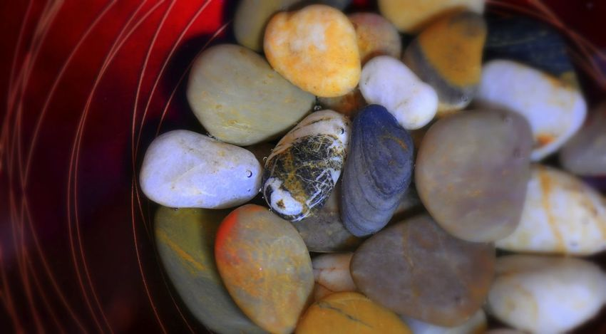 Rocks in a bowl of Water Decor Rock Spirituality Tranquil Tranquility Close-up Day Directly Above Food Food And Drink Freshness Healthy Eating Indoors  Large Group Of Objects No People Rock - Object Rocks In Water Spa Water