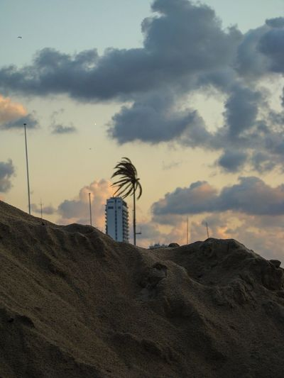 Architecture Architecture Beach Beachside Building Exterior Built Structure Cloud - Sky Clouds Day House Nature No People Outdoors Palm Palm Tree Sky Sunset Wind Windy