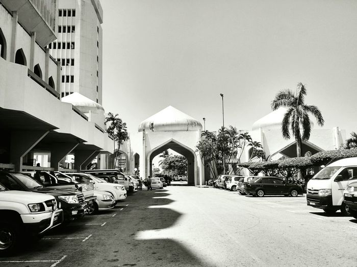 Dome Silhouette Blackandwhite Black And White Black & White B&w Photography Contrast Architecture Architecture_bw Monochrome Coconut Trees Palm Trees Contrasts Light And Shadow Lined Up In A Row Cars Domes Urban Photography Street Photography